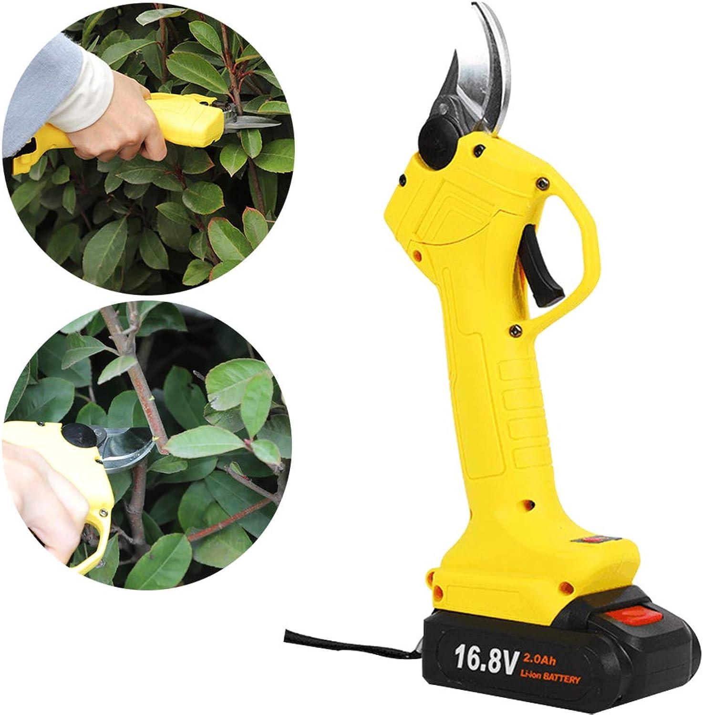 HWJF Professionelle elektrische Gartenschere, kabellose Baumschere für Gartenarbeit, elektrische Schere, Obstbaumhalterung (beide des größten Kalibers 30MM-25MM), 2Ah Lithium-Batterie B07PP2GRJR | Günstige Bestellung