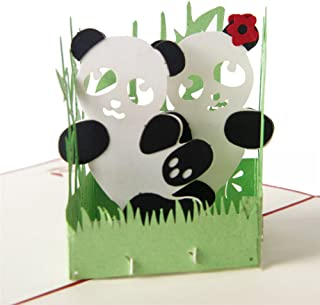 HeartMoon Panda Pop Up Cards Happy Birthday Congratulates Thank You 3D Pop Up Birthday Graduation Card for Wife Gift