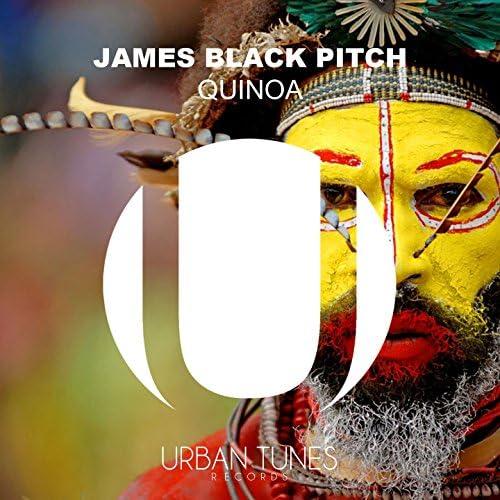 James Black Pitch