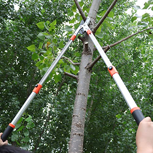 THANOS Extendable Anvil Loppers Tree Trimmer with Compound Action, Chops Thick Branches Ease,28-40'' Telescopic Heavy Duty Branch Cutter,2 Inch Clean Cut Capacity.