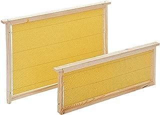 Succeedw Accessoires dApiculture Reine Attraper Cage-Tube dApiculture Capturer Abeilles-Id/éal pour lApiculture