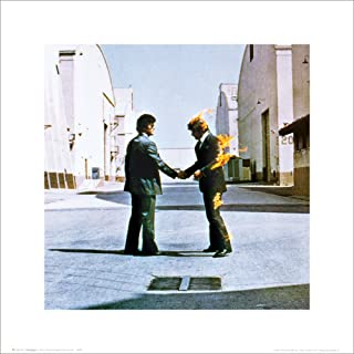 Pink Floyd Wish You Were Here Album Cover Psychedelic Classic Rock Music Poster Print 16 by 16