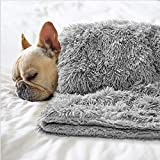 BENRON Premium Fluffy Pet Blanket for Small Medium Large Dogs, Cozy Reversible Sherpa Dog Blankets, Machine Washable, Soft, Warm Pets Throw Blanket 30x40 Inches Gray