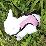 Easter Adjustable Rabbits Harness - Soft Breathable Mesh Harness and Leash with Velcro for Bunny Small Animals Walking, 2 Year Warranty,Pink