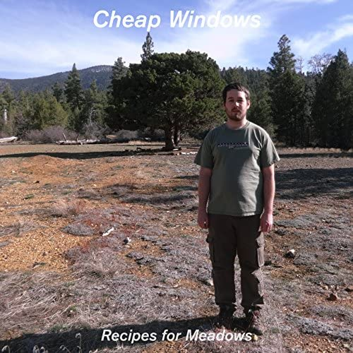 Cheap Windows