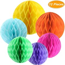 Sopeace 12 PCS 6 Colors 10 Inch, 6 Inch Honeycomb Tissue Paper Flower Balls, Tissue Paper Pom-poms Flowers Craft Kit For Wedding Birthday Party and Baby Shower Decoration