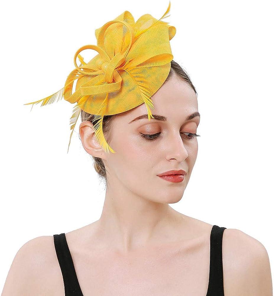 BAOBAO Womens Fascinator Cambric Feather Pillbox Hat Church Derby Hat Tea Party Headwear
