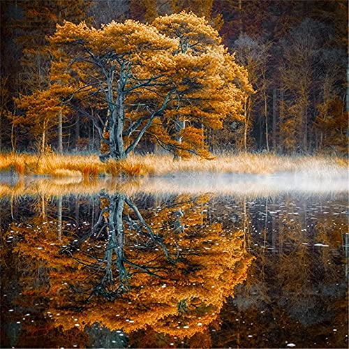 Jigsaw Puzzles for Adults, landscapeJigsaw Puzzle for Adults Sturdy Tight Fitting Pieces Easy Open...