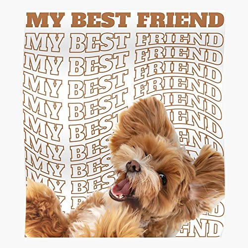Póster decorativo para pared de Mates Best Big Personson Are Friends For Going Dog A Friend My You Walk