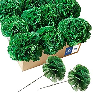 Royal Imports 100 Silk Carnations, Artificial Fake Flower for Bouquets, Weddings, Cemetery, Crafts & Wreaths, 5″ Stem Pick (Bulk)