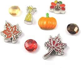 FCL Designs - Thanksgiving Theme Floating Charms Combination for Lockets