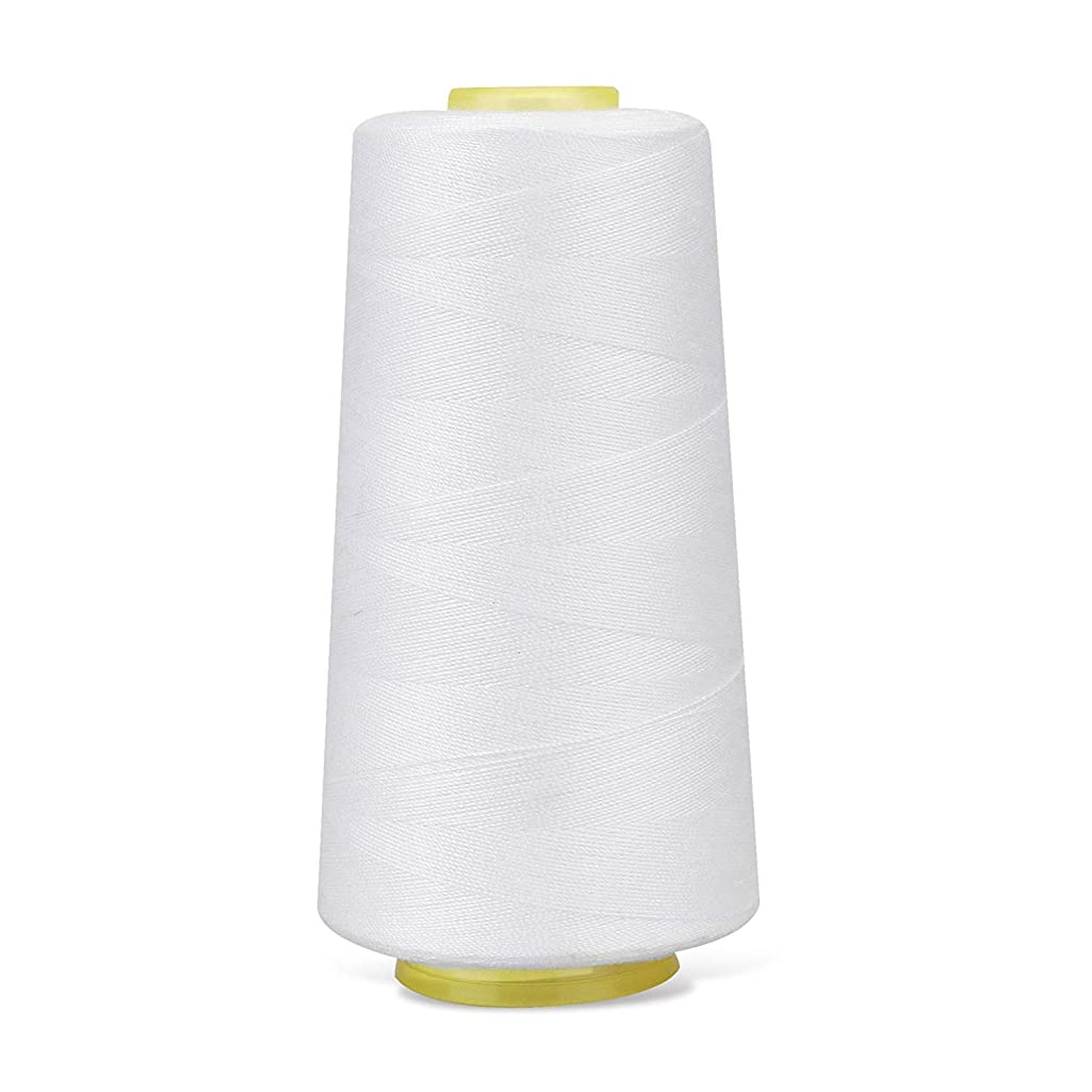 Bignay Polyester Sewing Thread Spools All-Purpose Connecting Threads for Sewing Machine and Hand Repair Works (2000 mtr) White