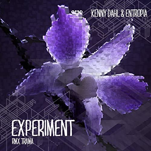 Kenny Dahl, Entropia & Trama
