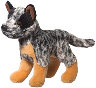 australian cattle dog baby