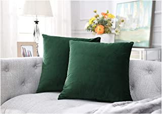 COMFORTLAND 18 x 18 Decorative Pillow Covers Pack of 2 Solid Soft Velvet Square Throw Pillow Cases Accent Pillowcases Euro Cushion Covers for Farmhouse Indoor Bedroom Sofa Couch Bed Kids,Amy Green