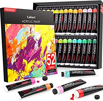 Caliart 52-Piece Acrylic Paint Set with Storage Case