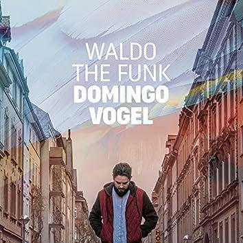 Domingo Vogel