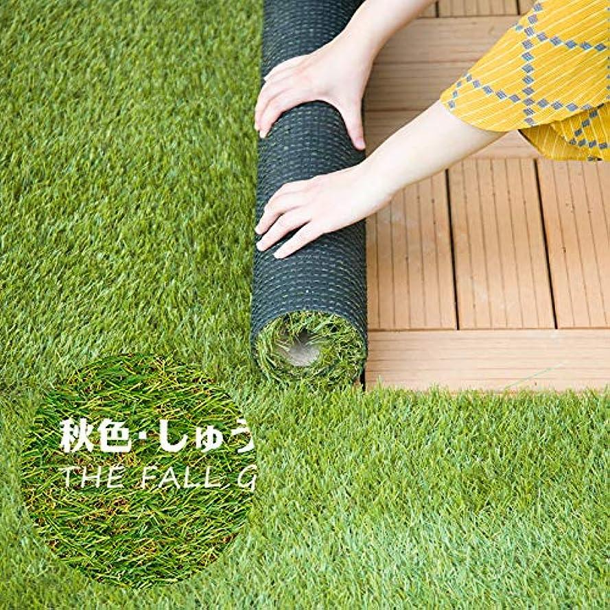 因子ぬれた姿を消す人工芝 ロールマット 幅1×10m 芝丈 35mm 人工芝生 ガーデニング ぼうそうシート U字ピン付き 秋色