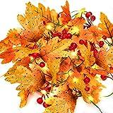 MUSCCCM Herbstgirlande,2m Ahornblatt Lichterketten mit 20 LED 26 Blätter 7 Blumen 6 Fruchtbüschel Herbst Dekoration für Fallen Weihnachten und Außen Zuhause Herbstparty Batterie Girlande