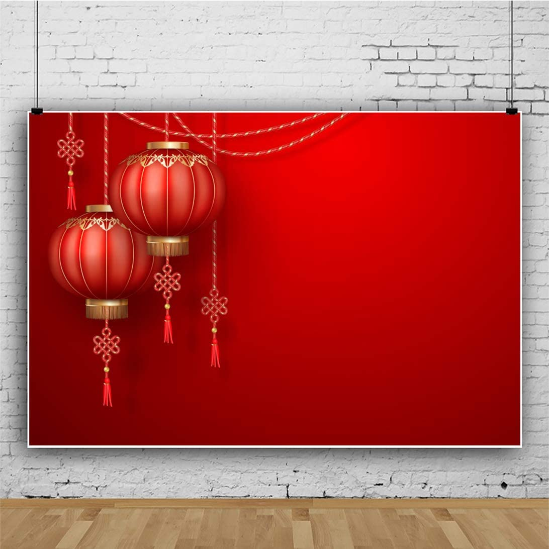 DaShan 8x6ft Polyester Spring Festival Chinese Backdrop Red Lantern Chinese Theme Party Photography Background China New Year Party Decor New Year Kid Adult Home Party YouTube Portrait Photo Props
