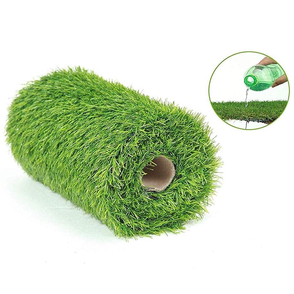 ガイドライン中発行するYNFNGXU 30mmパイルハイト人工芝 2メートル幅あなた自身の長さを選択してください自然でリアルな庭の芝生屋内屋外の風景(1mx2m) (サイズ さいず : 2x2m)