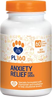 pet anxiety relief
