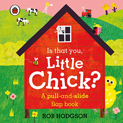 Is that you, Little Chick?: A pull-and-slide flap book