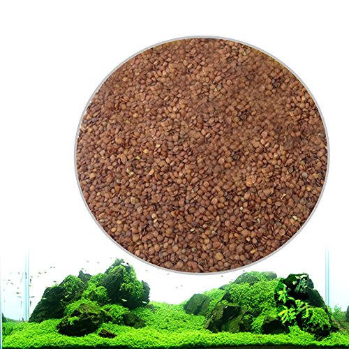 Zantec Semillas de plantas de acuario, Decoración de hierba