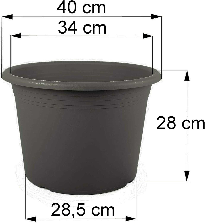 Floralo Blumentopf Cilindro rund grau dunkel anthrazit 30 cm Durchmesser x 21 cm 1x wetterfestes Pflanzgef/ä/ß aus UV-best/ändigem Kunststoff