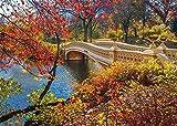 N/A Rompecabezas para Adultos 1000 Piezas Niños Edad 8 Años Regalo De Juguete para Niños Niña Niño Hombre Mujer Decoración De Arte Un Paseo por Central Park
