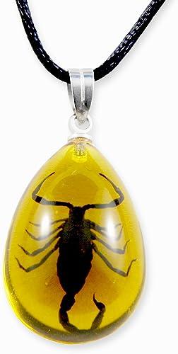 primera reputación de los clientes primero REALBUG negro Scorpion Necklace, Necklace, Necklace, Amber, small  hasta un 60% de descuento