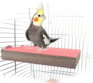 Colorful Bird Perch Stand Platform Natural Wood Playground Paw Grinding Clean for Pet Parrot Budgies Parakeet Cockatiels Conure Lovebirds Rat Mouse Cage Accessories Exercise Toys (Front)