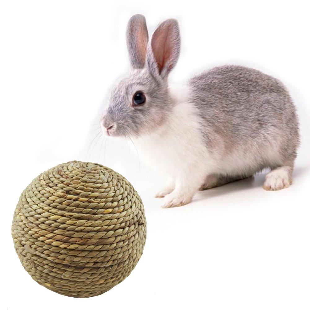 Lembeauty Juguete de pelota de césped natural para gatos, conejos ...