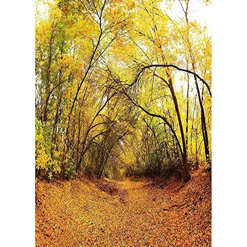 Fondo de fotografía de Bosque de otoño Fondo de Foto de Puente de Madera Tela de Vinilo 3D para Estudio fotográfico A24 9x6ft / 2,7x1,8 m