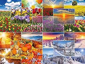 Edition Colibri - Juego de 20 tarjetas postales de naturaleza «Las cuatro estaciones» (20 diseños diferentes) con primavera, verano, otoño e invierno