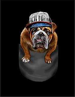 Fox Republic ブルドッグ ヒップホップ ポケット 犬 ホワイト キッズ パーカー シッパー スウェット トレーナー 110cm