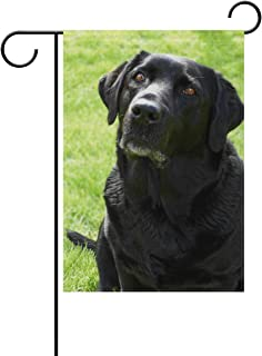 Black Labrador Retriever Dog Garden Flag Decor Outdoor 12 x 18 Inch Welcome House Yard
