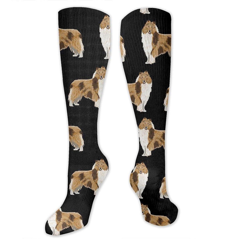 チョップドアミラーアミューズメント靴下,ストッキング,野生のジョーカー,実際,秋の本質,冬必須,サマーウェア&RBXAA Women's Winter Cotton Long Tube Socks Knee High Graduated Compression Socks Rough Collie Dog Socks