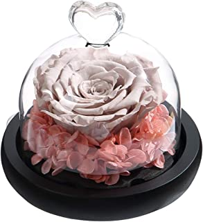 Best preserved rainbow rose Reviews