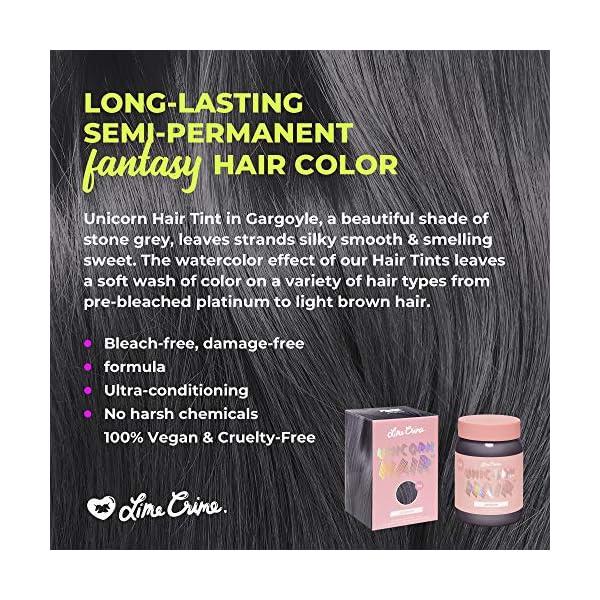 Lime Crime Unicorn Hair Tint, Gargoyle - Deep Stone Grey Fantasy Hair Color - Ultra-Conditioning, Semi-Permanent, Damage… 5