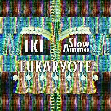 Eukaryote - Remixed