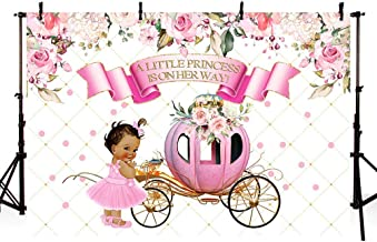 MEHOFOTO Little Princess Baby Shower Pink Floral Photo Studio Booth Background Girl Vintage Carriage Royal Celebration Backdrops Banner for Photography 7x5ft