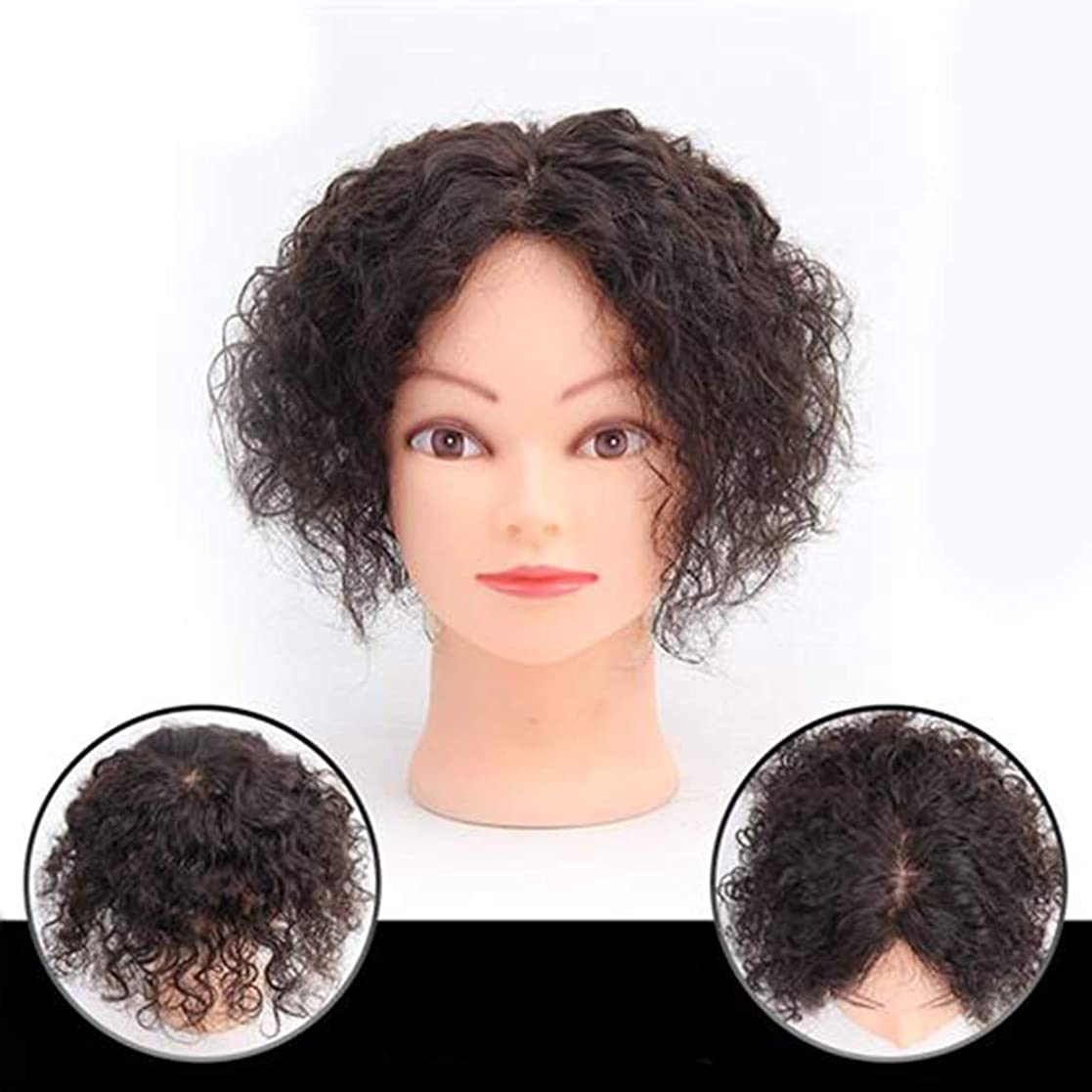 ストリームキャンセル荒れ地かつら 女性の短い巻き毛ふわふわナチュラルかつらハンドニードルリアルヘアカバー白髪日常服ファッションウィッグ (色 : Natural color, サイズ : 30cm)