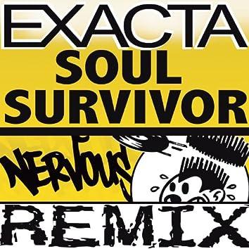 Soul Survivor (Angel Manuel's Higher Mix)