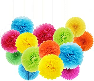 ZJHAI 20pcs Rainbow Paper Pom Poms and Paper Fans, 5 Colors, for Shop Wedding Party Decorations