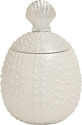 Plutus Brands Mesmerizing Styled Polystone Covered Shell Jar