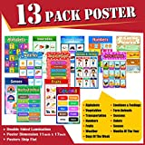 STEM APPROVED Educational Posters for Toddlers , Pack of 13 Large Laminated (11 X 17) Bulletin Board School Supplies Educational Preschool Posters Learning Classroom Posters for Homeschool and Kindergarten I Alphabet Posters Numbers Colors Senses Emotion and more
