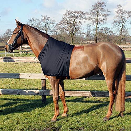 QHP Brustschutz Lycra Schulterschutz unter Decken schwarz (XL)