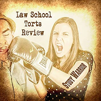 Law School Torts Review