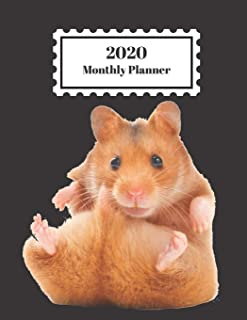 2020 Monthly Planner: Hamster Design Cover 1 Year Planner Appointment Calendar Organizer And Journal For Writing